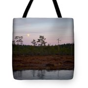 Moon Over Wetlands Tote Bag
