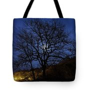 Moon Rise Behind Tree Silhouette At Night Tote Bag