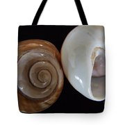 Moon Shells Tote Bag