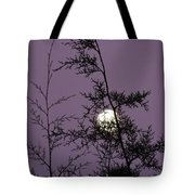 Moon Trees Tote Bag