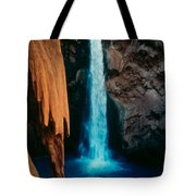 Mooney Falls Tote Bag