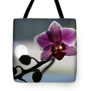 Moonlight And Orchid Tote Bag