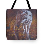 Moonlight Drink Tote Bag by Lorraine Foster