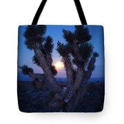 Moonlight Joshua Tote Bag
