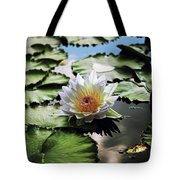 Moonlight Lily  Tote Bag