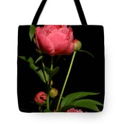 Moonlight Peony Tote Bag
