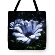 Moonlit Petals. From The Beautiful Tote Bag by Mr Photojimsf