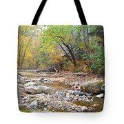 Moore's Creek Tote Bag