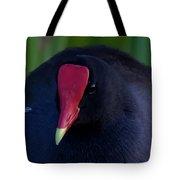 Moorhen Tote Bag