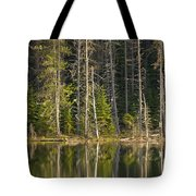 Moose Creek Reservoir Tote Bag