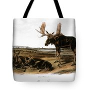 Moose Deer (cervus Alces) Tote Bag by Granger