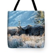 Moose In Cold Winter Ice Tote Bag