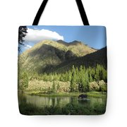Moose In The Elk Creek Beaver Ponds Tote Bag
