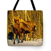 Moose In The Morning Tote Bag