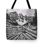 Moraine Lake Driftwood No 1 Tote Bag