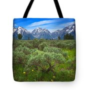 Moran Meadows Tote Bag