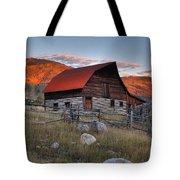More Barn Steamboat Tote Bag