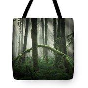 More Beams Of Light Tote Bag