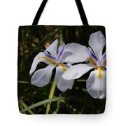 More Light And Color Tote Bag