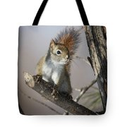 More Seeds Please Tote Bag