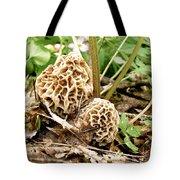 Morel Mushrooms Tote Bag