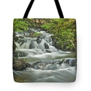 Morgan Falls 4584 Tote Bag