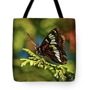 Mormon Metalmark Tote Bag