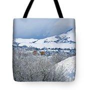 Mormon Tabernacle In Snow II Tote Bag