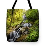 Morning At Amicalola Falls Tote Bag