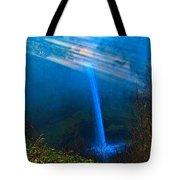 Morning At South Falls Tote Bag