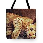 Morning Cat Tote Bag