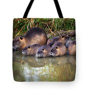 Morning Clean Up Tote Bag