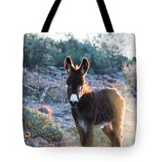 Morning Curiosity Tote Bag