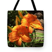 Morning Daylilies Tote Bag