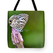 Morning Delight Tote Bag