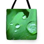 Morning Dew #2 Tote Bag