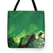 Morning Dew Diamonds Tote Bag