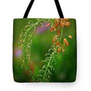 Morning Dew On Orange Flowers Tote Bag