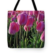 Morning Dew Tulips Tote Bag