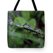 Morning Dewdrops 2 Tote Bag