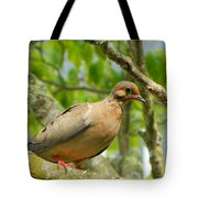 Morning Dove Tote Bag