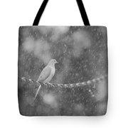 Morning Dove In The Rain Tote Bag