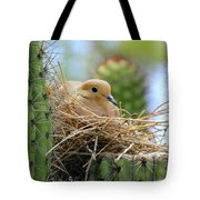 Mourning Dove Nest In A Cactus Tote Bag