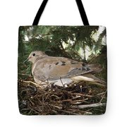 Morning Dove On Her Nest 2 Tote Bag