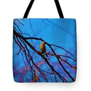Morning Finch Tote Bag
