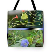 Morning Glories And Butterfly Tote Bag