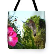 Morning Glories And Humming Bird Tote Bag