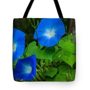 Morning Glory Family Tote Bag
