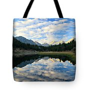 Morning Glory In The Land Of Little Lakes Tote Bag by Sean Sarsfield