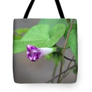 Morning Glory Opening Tote Bag by Jackson Pearson